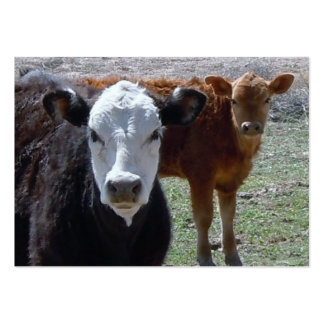 Cattle Calves - Shower Gift Registry - Western Large Business Cards (Pack Of 100)