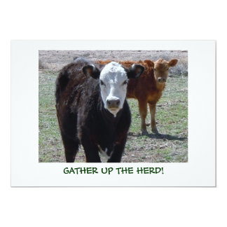 Cattle Calves - Western Shower Party Card