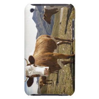 Cattle Case-Mate iPod Touch Case