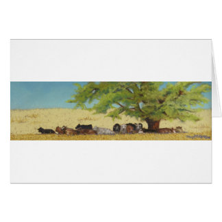 cattle, cow card