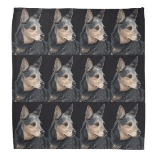 "Cattle Dog Bandanna - ""Quigley"""