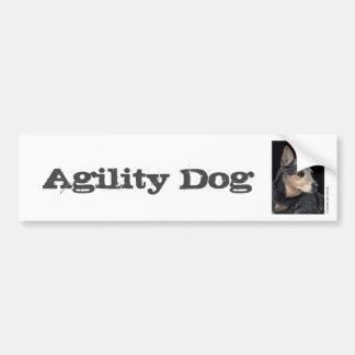 """Cattle Dog Bumper Sticker - """"Quigley"""" 3"""