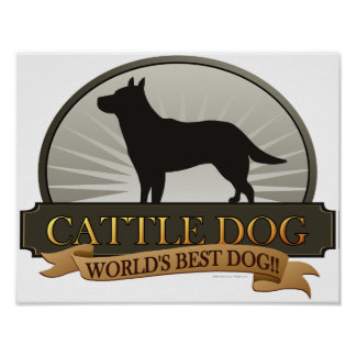 Cattle Dog Posters