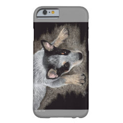 Case-Mate Barely There iPhone 6 Case with Australian Cattle Dog Phone Cases design