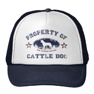 Cattle Dog Trucker Hats