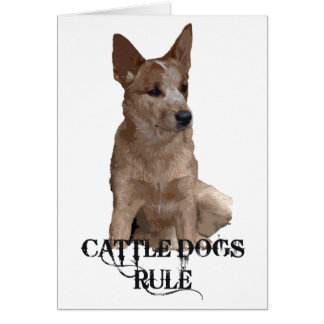 Cattle Dogs Rule Greeting Card