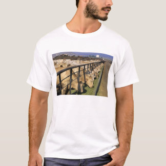 Cattle eat at a feedlot in Grandview, Idaho. T-Shirt