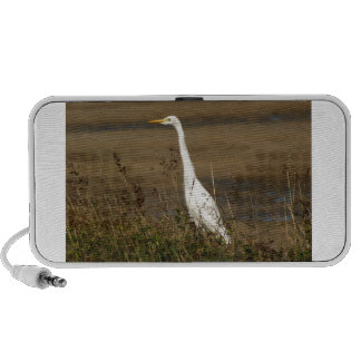 Cattle Egret iPhone Speakers
