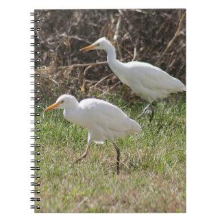 Cattle Egrets Spiral Photo Notebook