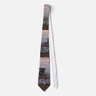 Cattle Egrets & Tractor Tie