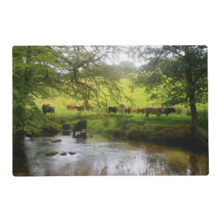 Cattle Golitha Falls River Fowey Cornwall England Placemat