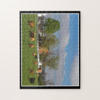 Cattle Grazing 11x14 Puzzle By Thomas Minutolo