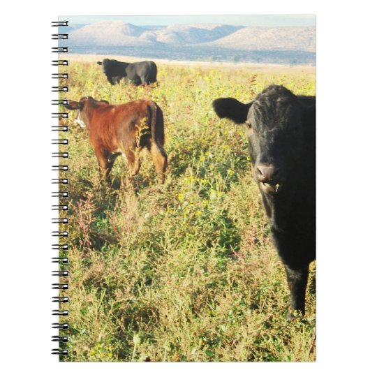 Cattle Herd Calves Notebook