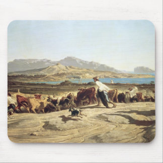 Cattle herding near Marseilles, 1853 (oil on canva Mouse Pad