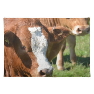 Cattle in the Isles of Scilly Cloth Placemat