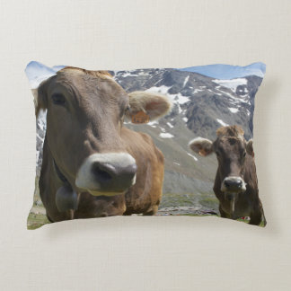 Cattle of the 'Alpine Brown' breed Accent Pillow
