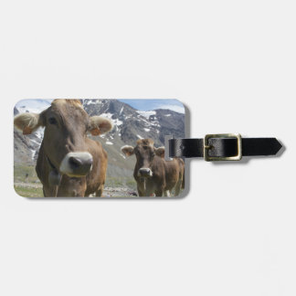 Cattle of the 'Alpine Brown' breed Luggage Tag