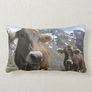 Cattle of the 'Alpine Brown' breed Lumbar Pillow