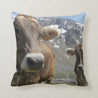 Cattle of the 'Alpine Brown' breed Throw Pillow