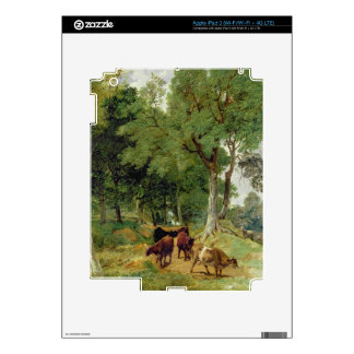 Cattle on a Devonshire Lane iPad 3 Decal