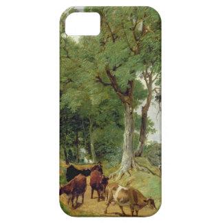 Cattle on a Devonshire Lane iPhone SE/5/5s Case