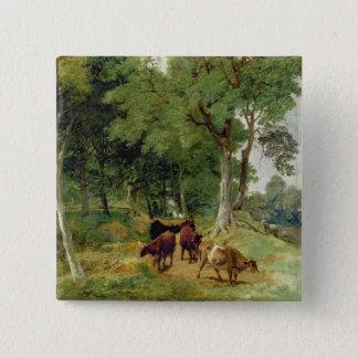 Cattle on a Devonshire Lane Pinback Button