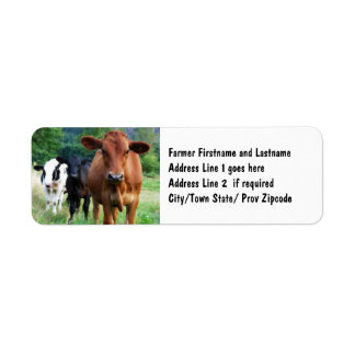 Cattle on Field Label