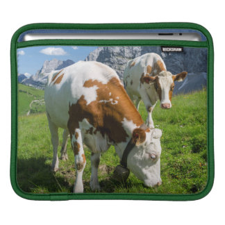 Cattle On High Pasture In Karwendel Mountain 2 Sleeve For iPads