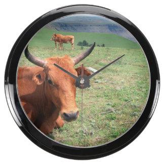 Cattle On Hill Eastern Cape South Africa Aquarium Clocks