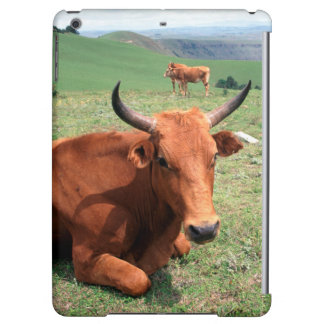 Cattle On Hill, Eastern Cape, South Africa Case For iPad Air