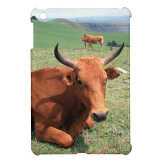 Cattle On Hill, Eastern Cape, South Africa iPad Mini Covers