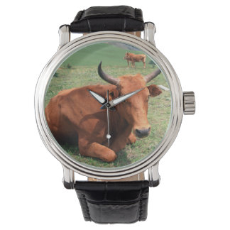 Cattle On Hill, Eastern Cape, South Africa Wristwatch