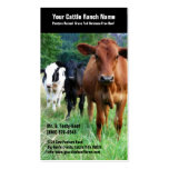 Cattle on Pasture Business Cards