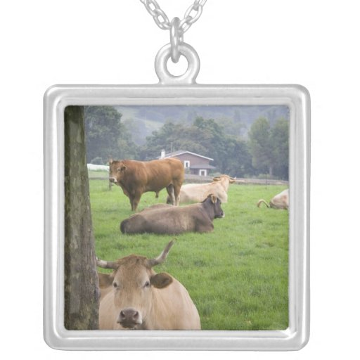 Cattle on rural farmland near the town of square pendant necklace
