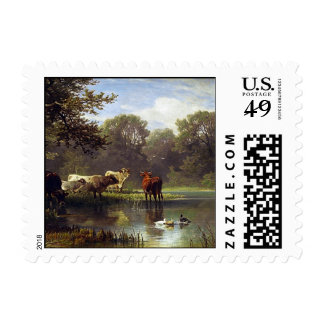 Cattle on the Pond Postage Stamps