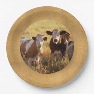 Cattle Paper Plates