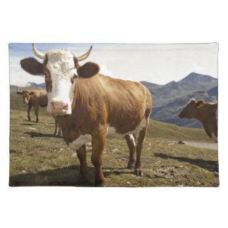 Cattle Cloth Place Mat