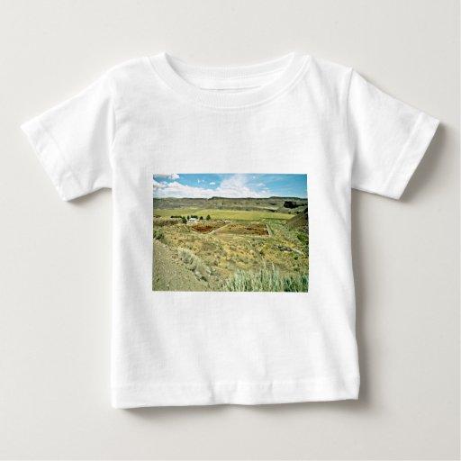 Cattle Ranch Below The Mesas Shirt