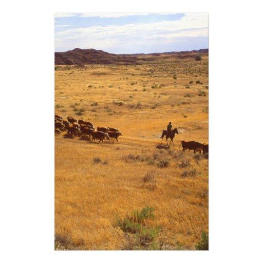 Cattle roundup custom stationery