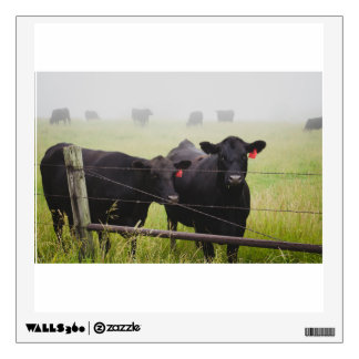 Cattle watching over fence wall decal