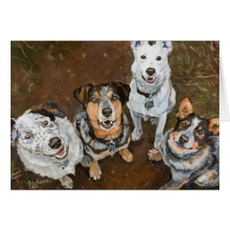 Cattledogs Smiling Cattle Dogs and Heelers Card
