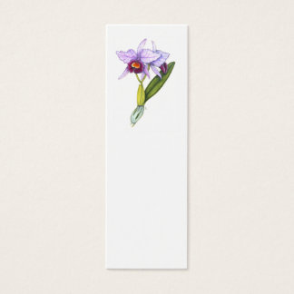 Cattleya labiata mini business card