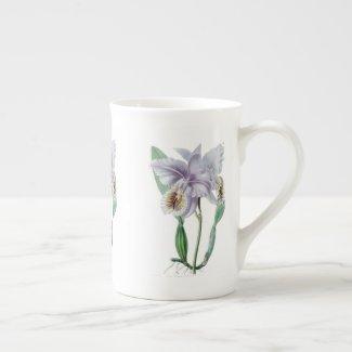 Cattleya Orchid Botanical Bone China Mug