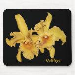 Cattleya Orchid Mousepad
