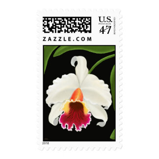 Cattleya Orchid Postage
