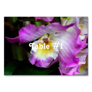 Cattleya Orchid Table Cards