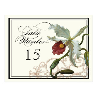 Cattleya Orchid taupe -  Table Placecard Numbers Postcard