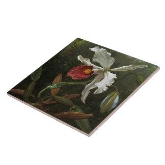 Cattleya Orchid tile