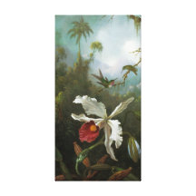 Cattleya Orchid Wrapped Canvas Canvas Print