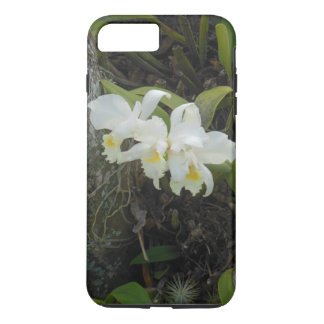 Cattleya Orchids growing on a Plumeria Tree iPhone 8 Plus/7 Plus Case